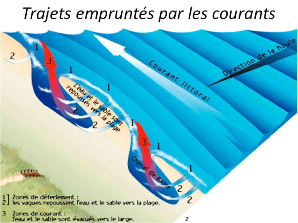 schéma décrivant les courants sur les plages de lacanau
