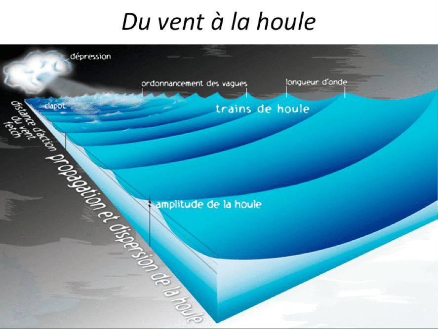 schéma décrivant la formation de la houle par le vent