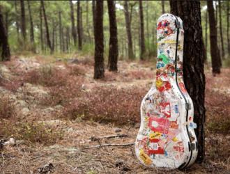 une guitare devant un arbre dans la foret à lacanau